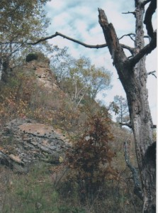 Decorah Mound east face 2009