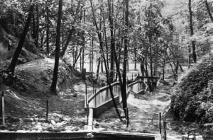 High Cliff -ark 1920.jpg