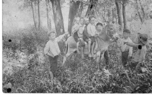 Whitehall children with donkey