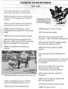 Fair memories 1867-1983 (612x800)